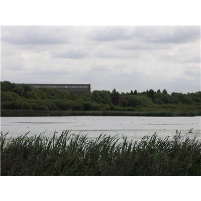 View across Boultham Mere with industrial buildings in the background.