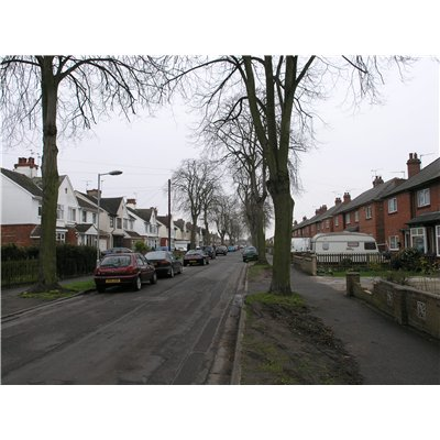 View down St. Andrews Drive. The mature trees planted on verges along the streets as well as in some front and rear gardens contribute to the suburban character of the Character Area