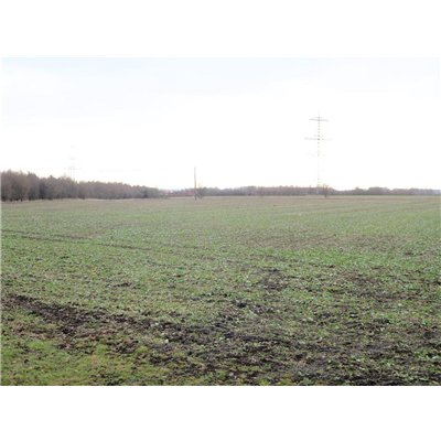 View of North Hykeham Fields from Long Lane